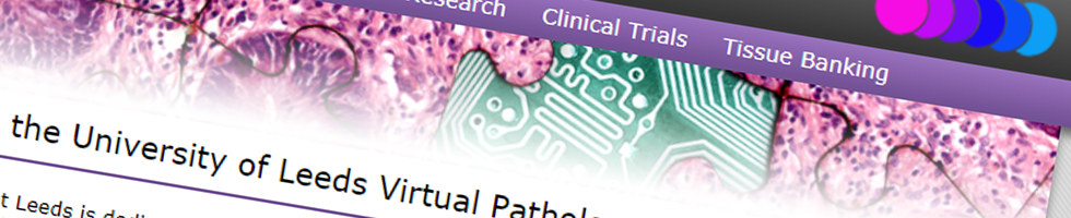Leeds Virtual Pathology